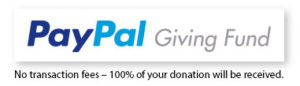 PayPal giving fund donation button